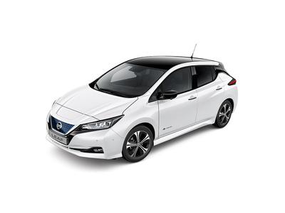 Nissan LEAF (1 / 1)